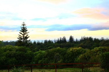 Fence ocean view 570x380