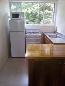 1 or 2 Bedroom Suite - Kitchen