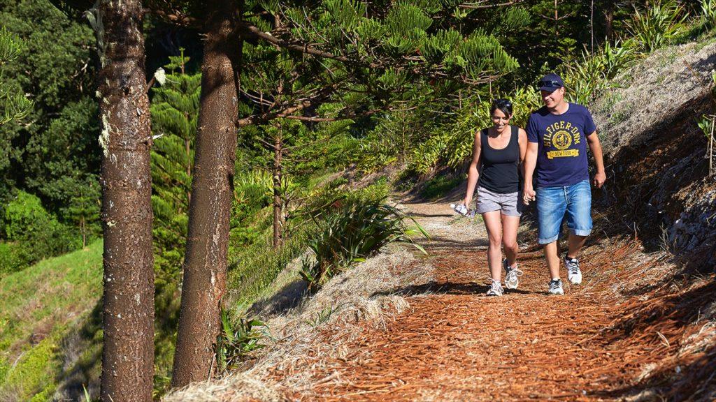 Walking Norfolk Island